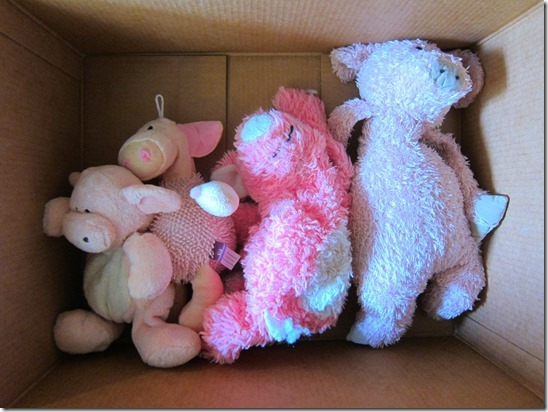 pig dog toys
