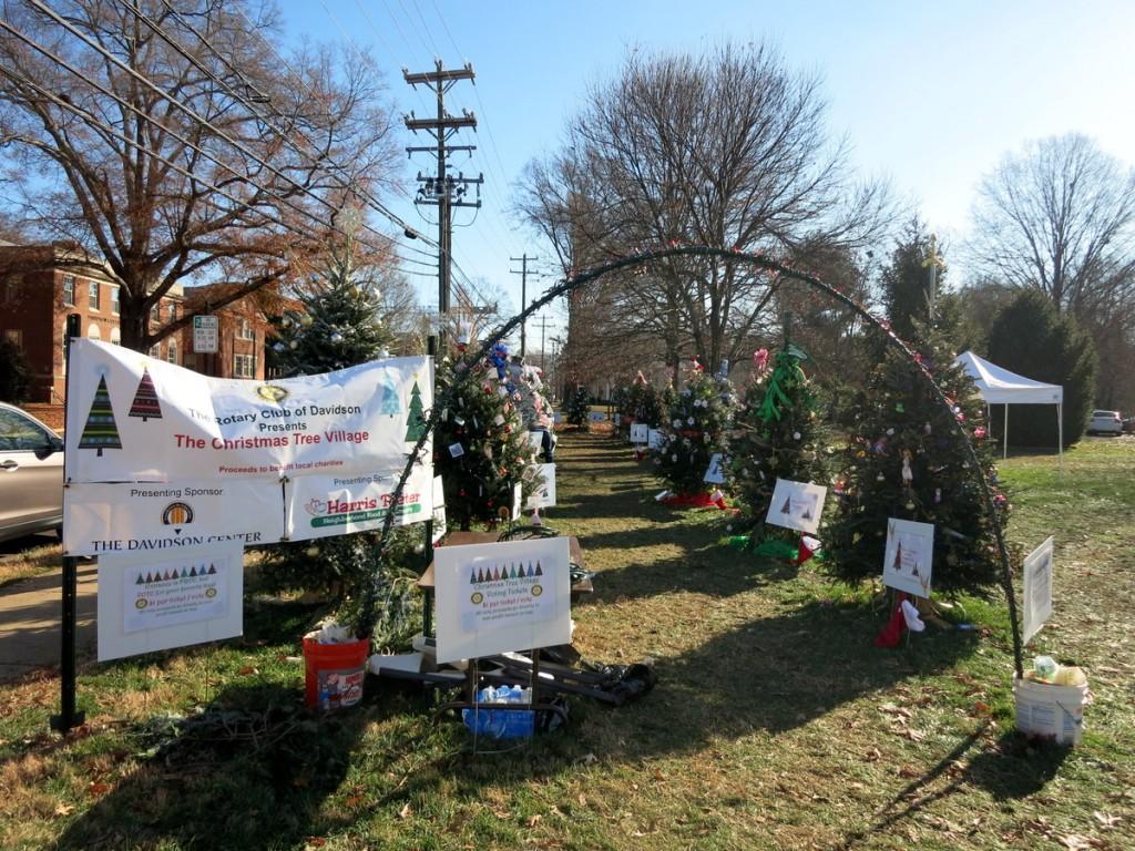 Christmas in Davidson