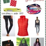 Gift Guide For Fitness Lovers