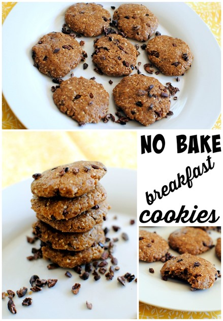 No Bake Breakfast Cookies