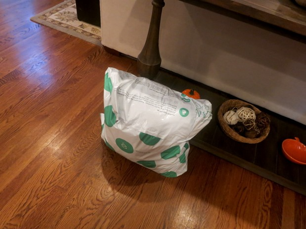 ThredUp Donation Bag