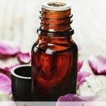 Rosehip Seed Oil - Why this stuff is AMAZING for your skin