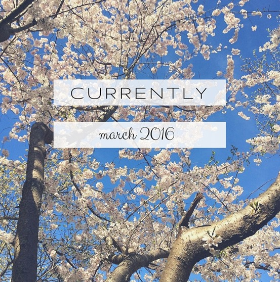 CURRENTLY - Blog Survey