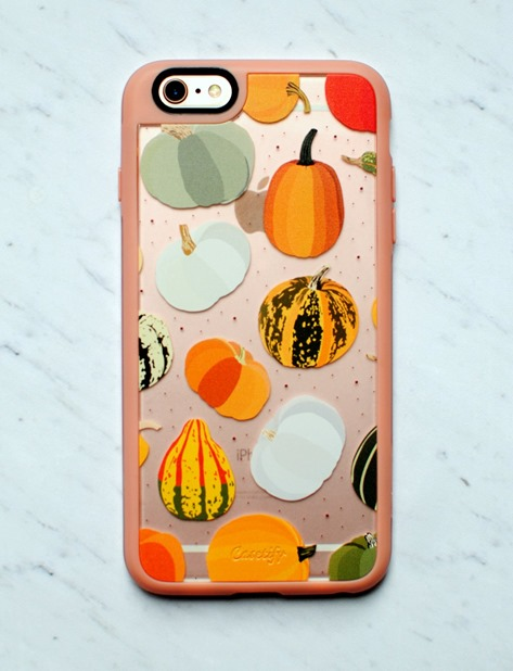 Pumpkin iPhone 6 Phone Case