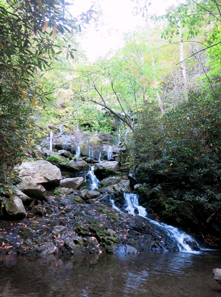 Lower Catawba Falls Hike