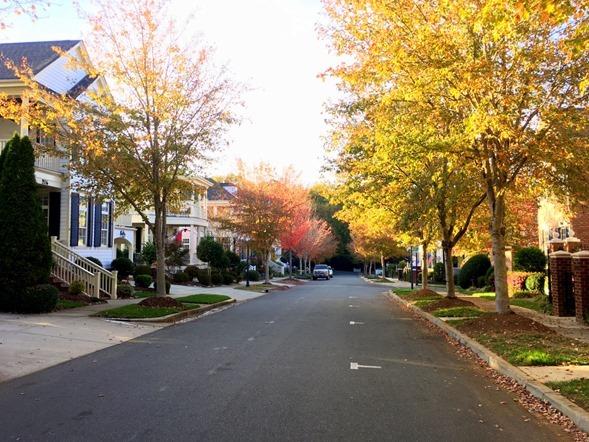Davidson NC Fall 2016