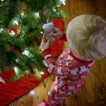 Chase-Christmas-Tree_thumb.jpg
