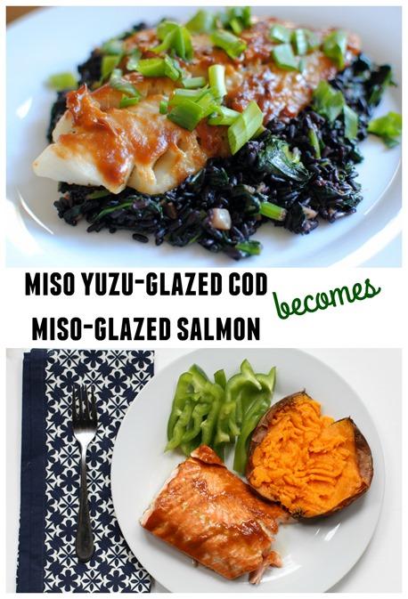 Miso Cod and Miso Salmon