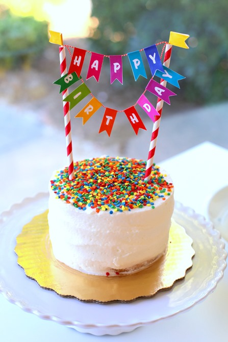 Rainbow Sprinkle Birthday Cake