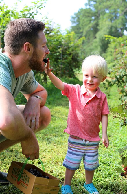 ryan chase blackberry picking