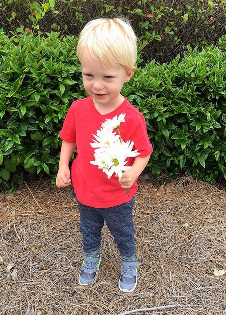 Meet the Teacher Flowers