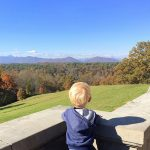 Biltmore Estate Mountain Views
