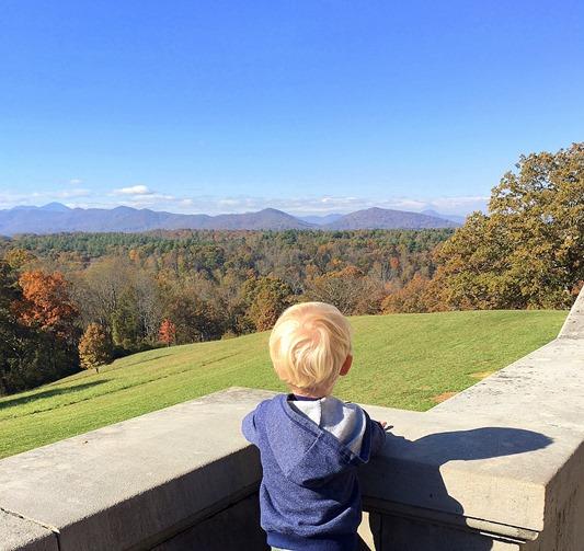 Biltmore Estate Mountain Views