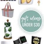 PBF Gift Guide 2019: Gifts Under $30