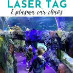 Sea Life, Laser Tag and Plasma Car Chaos