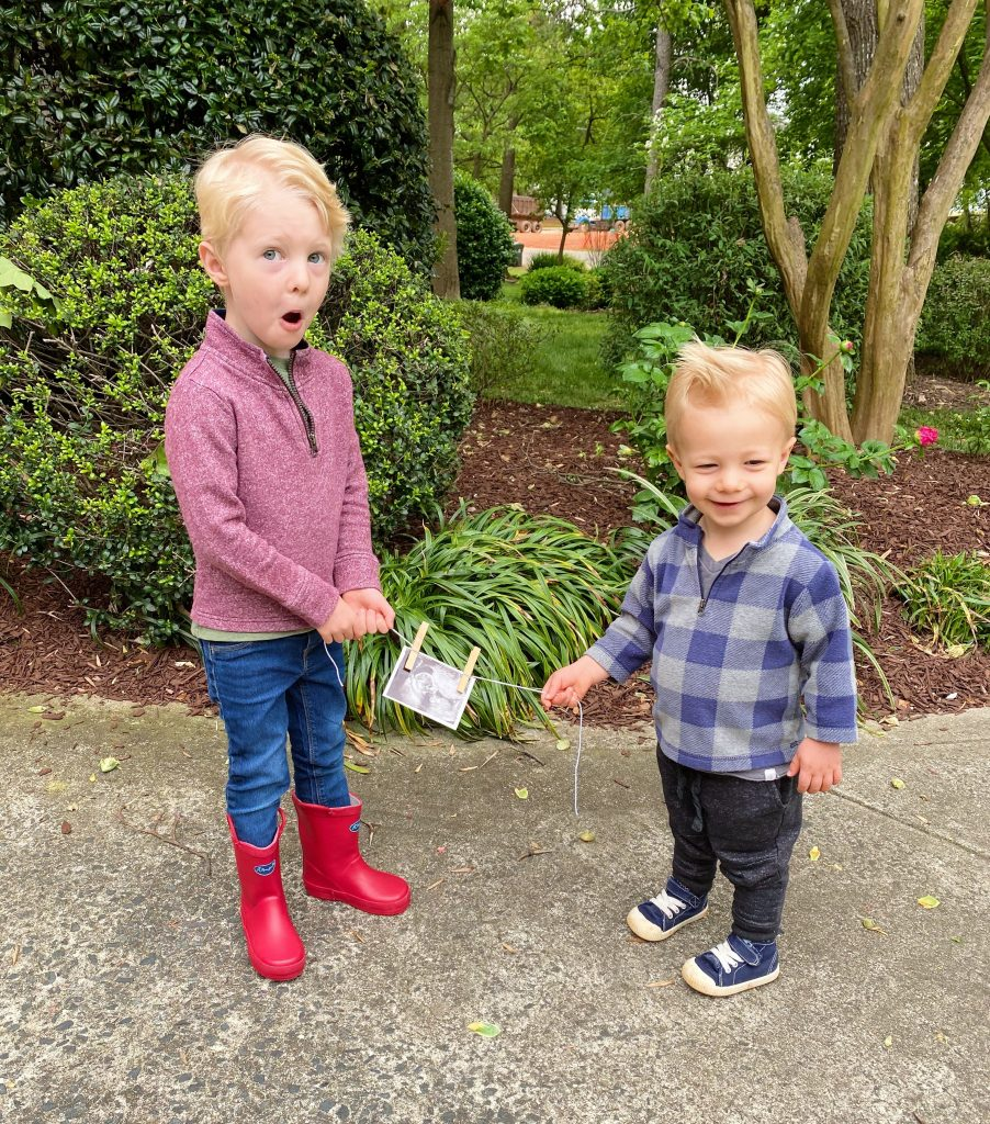 chase ryder baby #3 announcement